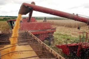 Preço baixo das terras e proximidade de portos exportadores têm atraído cada vez mais agricultores para a região do MatopibaImagem de arquivo/Agência Brasil