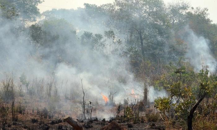 Formoso do Araguaia recebe a   força-tarefa contra incêndios