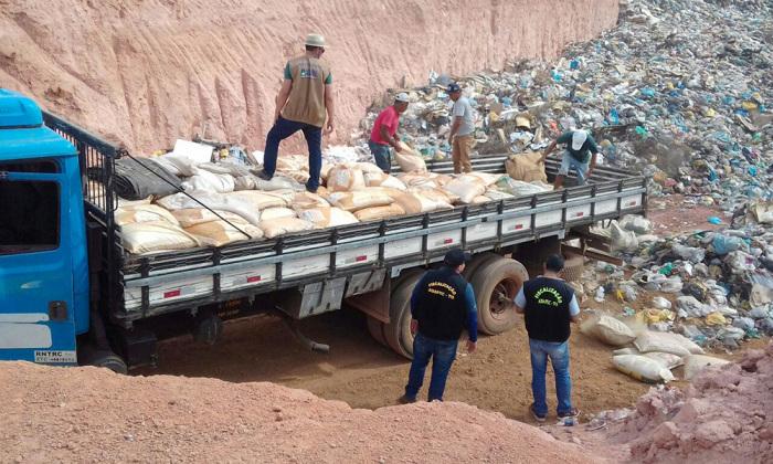 Adapec apreende cinco toneladas de sementes irregulares na BR-153